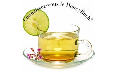 Connaissez-vous le honeybush?